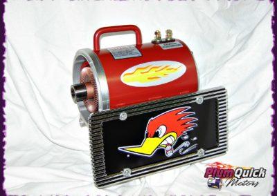 plumquick-motors-1-029