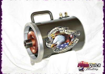 plumquick-motors-1-052