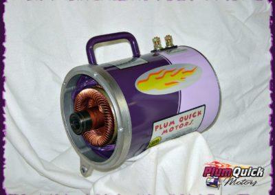 plumquick-motors-1-065