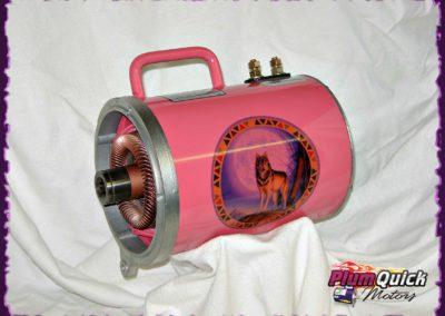plumquick-motors-1-071