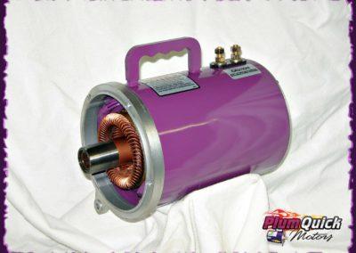 plumquick-motors-3-014