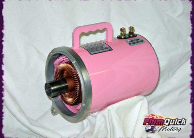 plumquick-motors-3-036